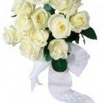 Белые розы — это символ вечной любви!