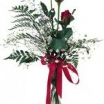 Бордовые розы — неистовая страсть и восхищение