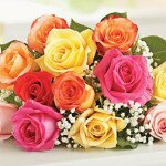 Оранжевые и персиковые розы — горячие чувства и скромность