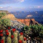 Посещение национального парка Гранд Каньон