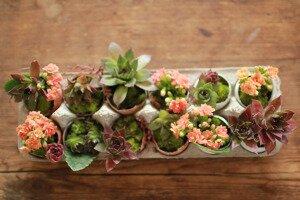 5 идей, как украсить дом к весне